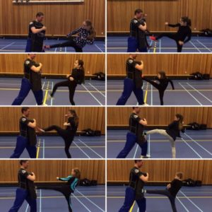 Figure skaters learning Kung Fu